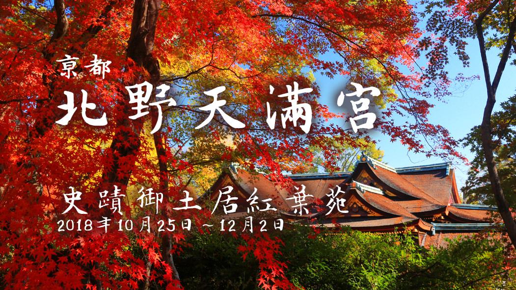 紅葉季▶京都.學問之神北野天滿宮【御土居】特別開放