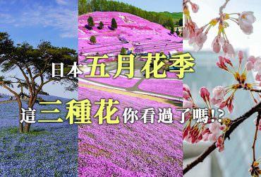 3種日本五月份【春季賞花名景推薦】百花盛開踏青去!