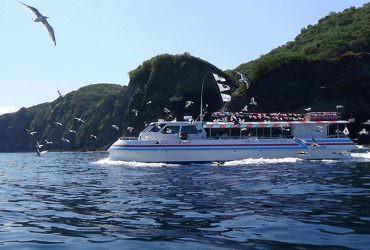 【積丹半島】水中展望船ニューしゃこたん号 不負責任之翻譯【注意事項】