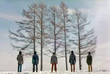 【北海道景點】因偶像嵐ARASHI而聲名大噪的美瑛人氣景點嵐之木(五本の木)