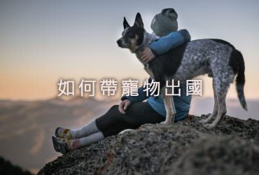 【教學】如何帶寵物出國?寵物出國申請流程懶人包!加碼推薦交通方式、寵物友善住宿