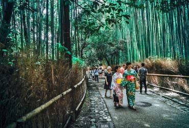 台灣人訪日的理由?分析為什麼台灣人那麼愛去日本