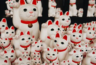 東京特色神社《豪德寺》數不完的招福貓!據說是招財貓的發源地!?